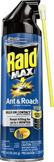 raid-max-ant-and-roach.png?h=533&w=180&l